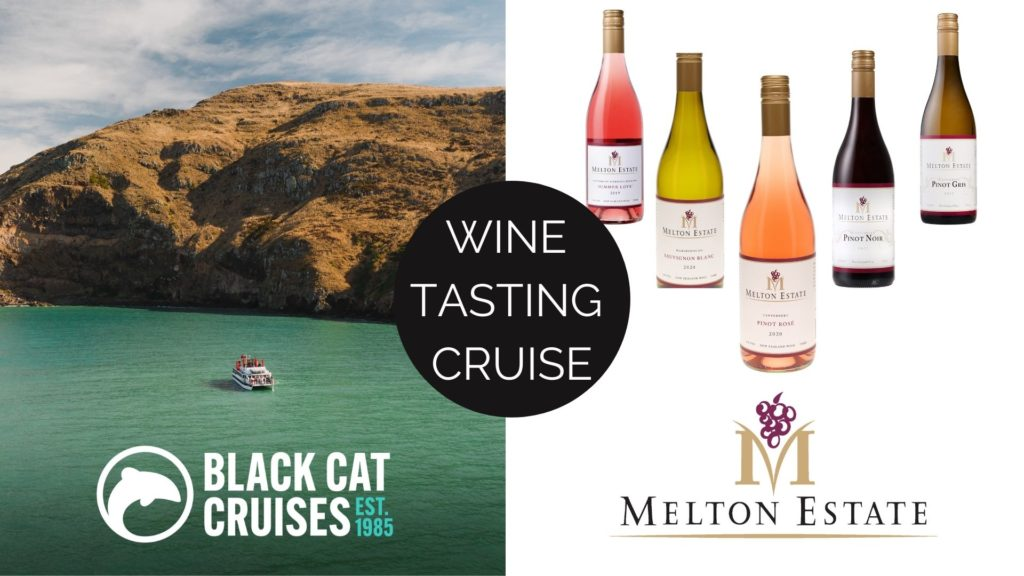 christchurch christmas cruise wine tasting