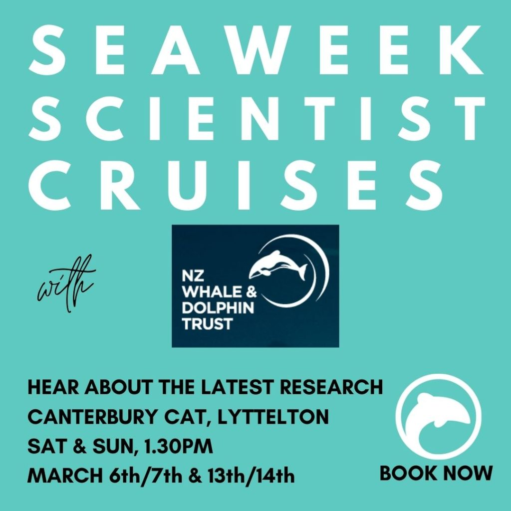 seaweek 2021 scientist cruises lyttelton harbour